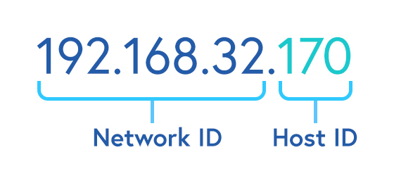 Illustrated diagram of Network ID and Host ID