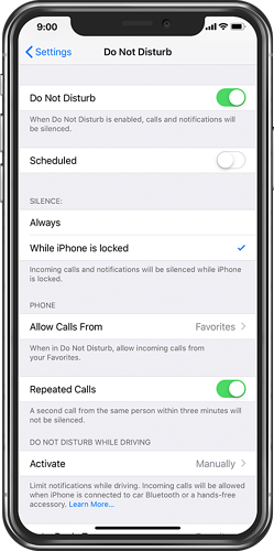 iPhone Settings with Do Not Disturb on