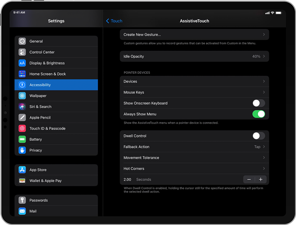 iPad Pointer Devices settings