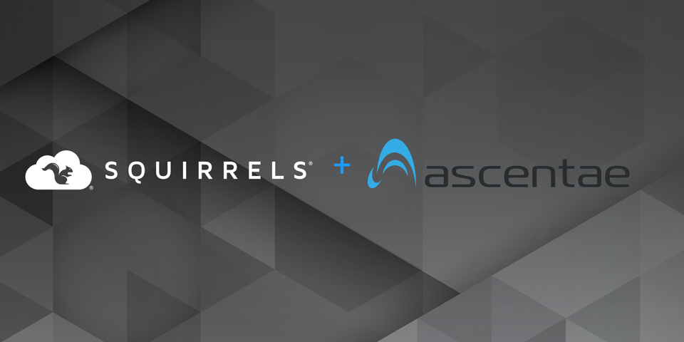 Squirrels partners with Ascentae