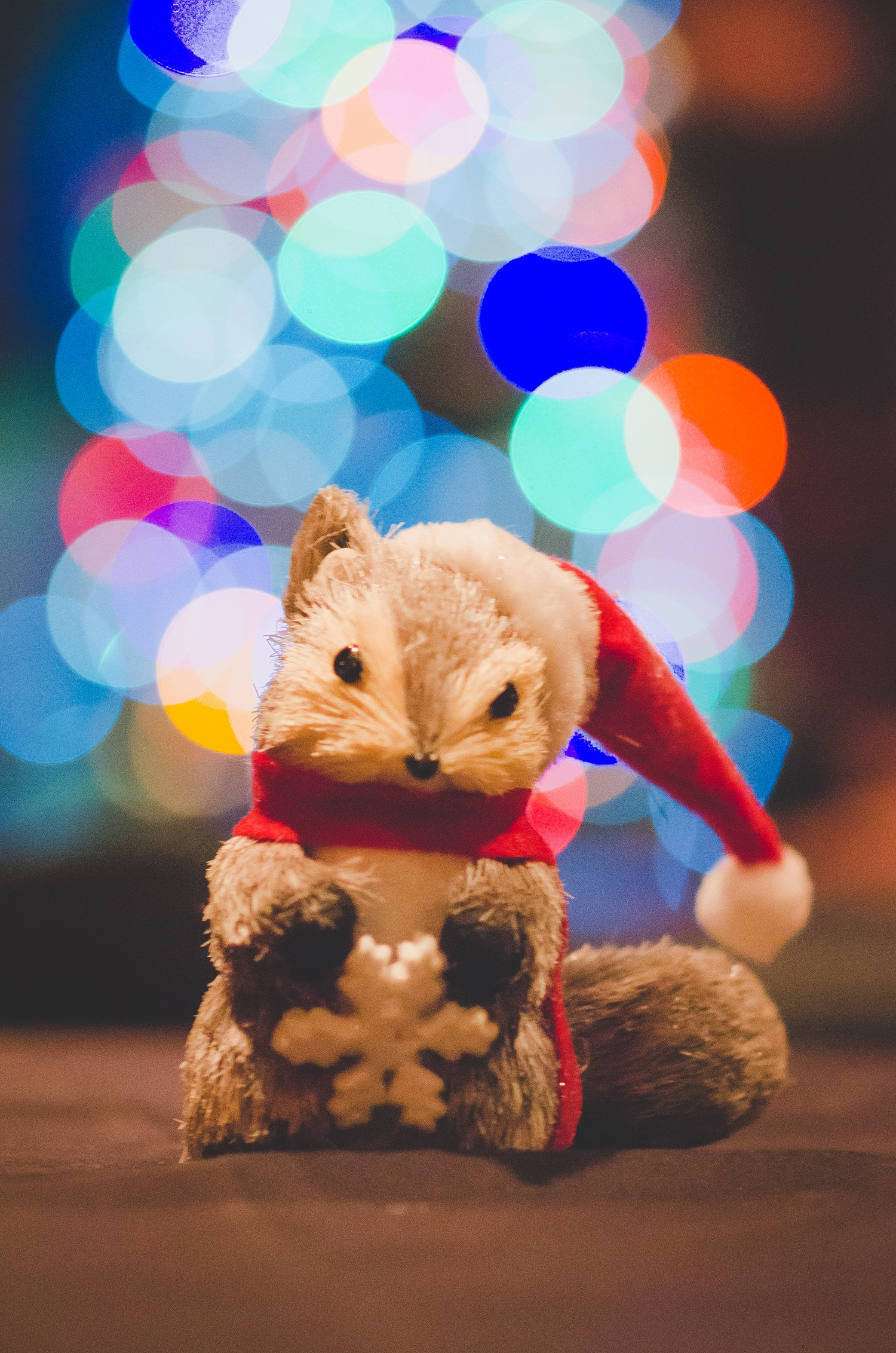 Squirrels Holiday 2016