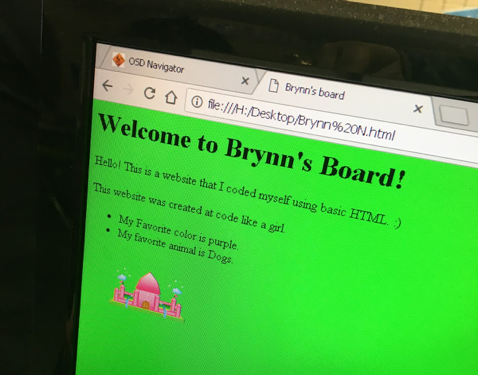 Student-coded website
