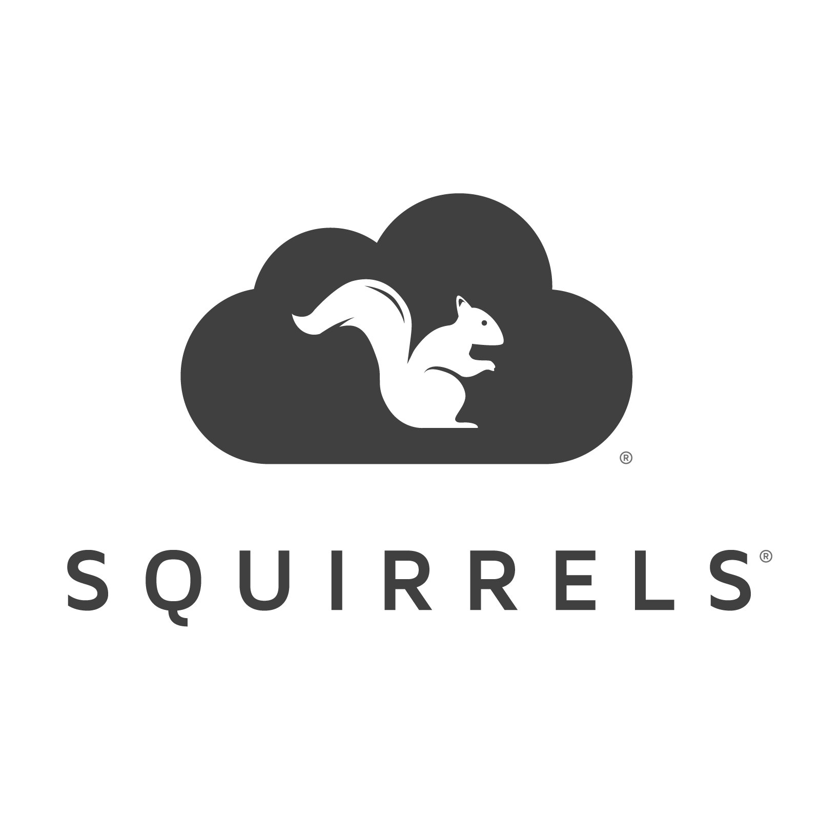 100 Pictures of Airsquirrels